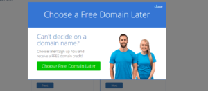 decide free domain later bluehost